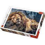 Alvó oroszlán 1000db-os prémium puzzle